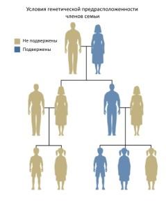 Схема наследственной передачи заболвения