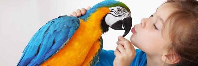 Девочка с попугаем
