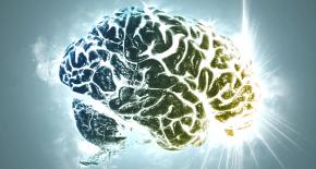Мозг может восстанавливаться