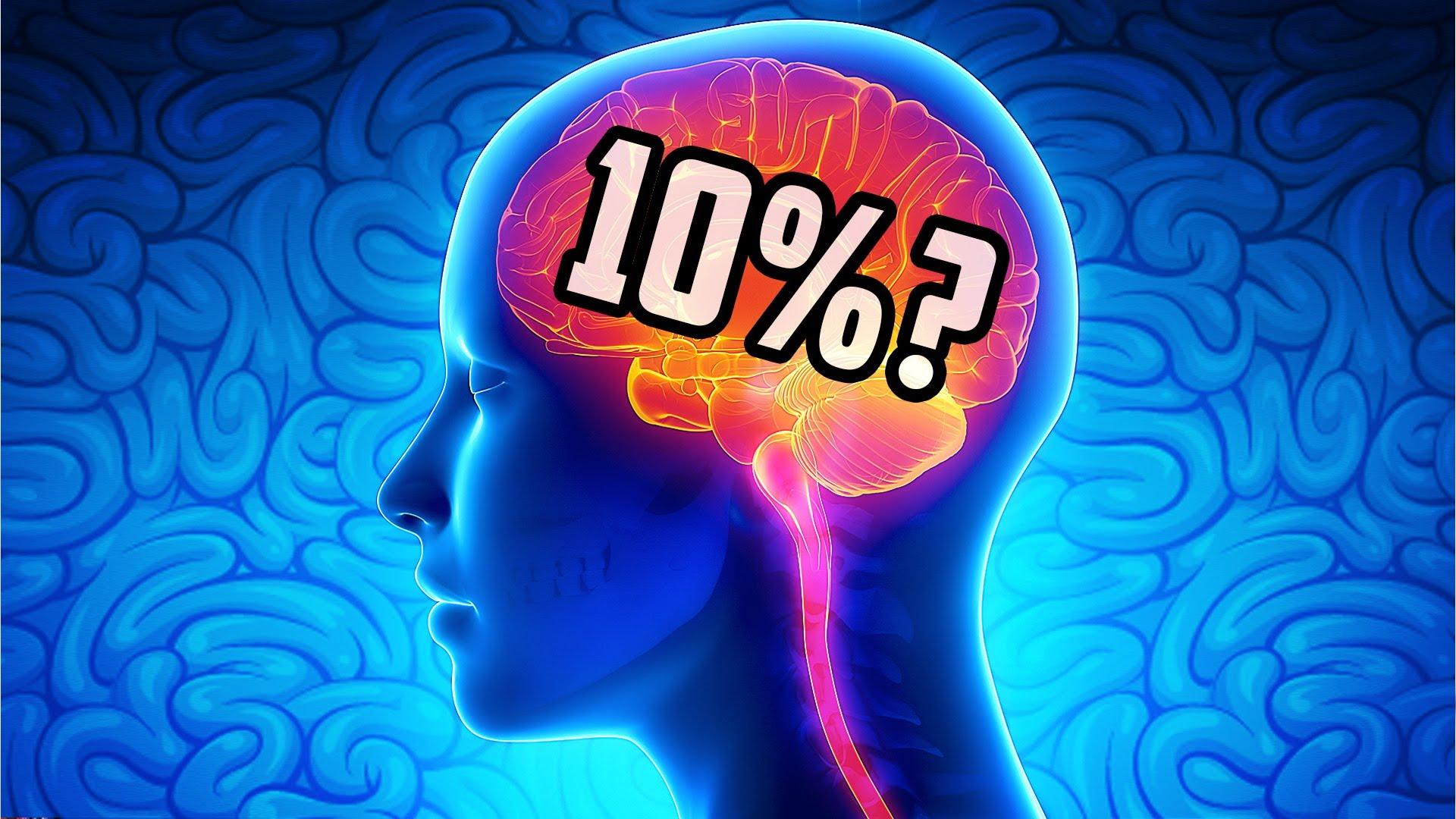 Как сделать мозг работающим на 100 процентов